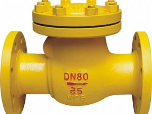 Swing check valve for ammonia H44FB